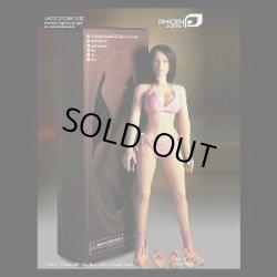 画像1: Phicen/TBLeague Female シームレス body ラージバスト(色白カラー)(お取り寄せ品)