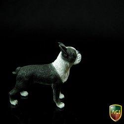 画像4: ACI 1/6 ボストンテリア Boston Terrier   *お取り寄せ