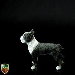 画像3: ACI 1/6 ボストンテリア Boston Terrier   *お取り寄せ
