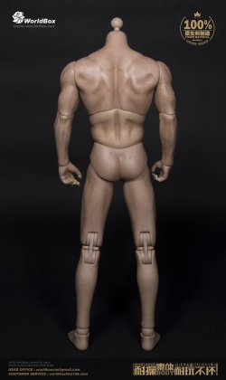 """画像2: WORLD BOX 1/6 リアルマッスル男性素体 """"シックチェスト&ブロードショルダー"""" ボディ AT012 *お取り寄せ"""
