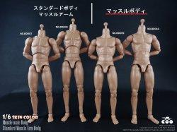 画像1: COOMODEL 1/6 男性素体 マッスルボディ 標準(BD009)/高身長(BD010) *お取り寄せ