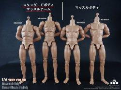 画像1: COOMODEL 1/6 男性素体 スタンダードボディ マッスルアーム 標準(BD007)/高身長(BD008) *お取り寄せ