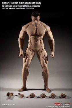 画像1: TBLeague 1/6 スーパーフレキシブル シームレス男性素体 スーパーマッシブ PL2018-M35  *お取り寄せ