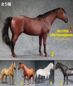 画像1: Mr.Z 1/6 サラブレッド 馬 5種 MRZ056 *予約