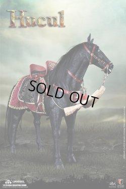 画像1: COOMODEL 1/6 ポーランド王国軍 有翼重騎兵 フサリア ≪戦馬≫ ヒューカル馬 Hucul スタチュー SE097 *予約