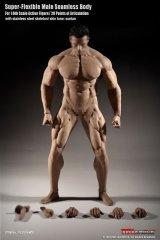 画像: TBLeague 1/6 スーパーフレキシブル シームレス男性素体 スーパーマッシブ PL2018-M35  *お取り寄せ